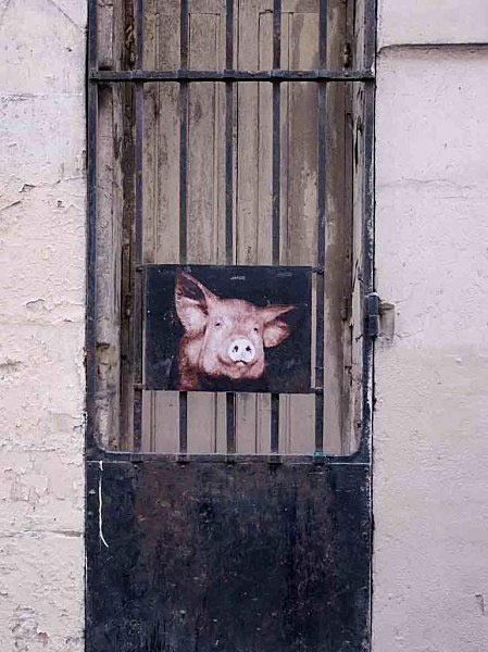 rue de Montpensier, 75001, le Cochon septembre 2010 http://animaux.dans.les.rues.de.paris.over-blog.com