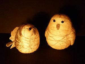 Cam Dup petits animaux au clair de lune