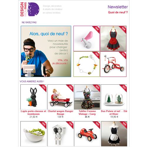 Newsletter Quoi de neuf sur Design from Paris - Février 2013