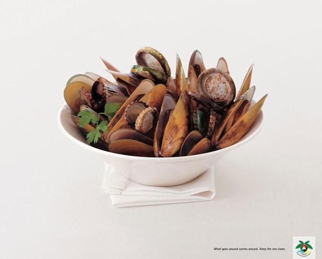 On recolte ce que l'on sème. Gardons la mer propre par JWT