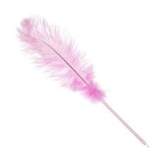 un style en forme de plume rose